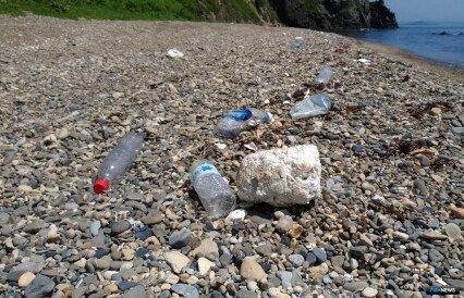 В России готовят меры против пластикового мусора